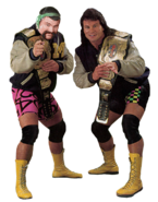 Steinerbrothers WWF
