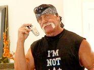 Hogan Knows Workouts 5