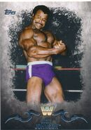 2016 Topps WWE Undisputed Wrestling Cards Rocky Johnson 86
