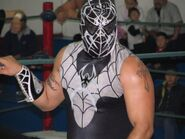 Black Spider (Tijuana) 1