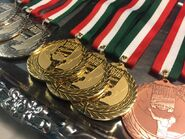 Lucha World Cup Medal