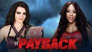 Payback 3