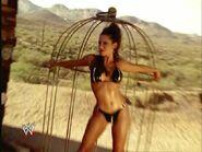 Divas - Desert Heat 7
