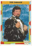 1995 WWF Wrestling Trading Cards (Merlin) Ted Dibiase 14