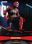 SUICIDE 77