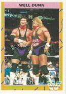 1995 WWF Wrestling Trading Cards (Merlin) Well Dunn 78
