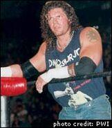 Raven WCW
