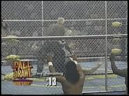Fall Brawl 1995.00041