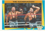1995 WWF Wrestling Trading Cards (Merlin) Bushwhackers 141