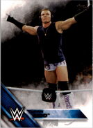 2016 WWE (Topps) Tyson Kidd 46