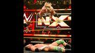 November 11, 2015 NXT.6