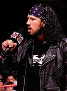 X Pac - Sean Waltman 16 display image