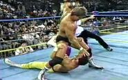 Fall Brawl 1993.00017