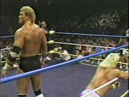 Great American Bash 1989.00017