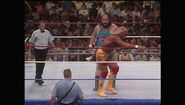 SummerSlam 1990.00050