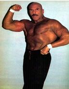 Superstar Billy Graham 25
