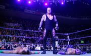 Undertaker ring purple