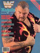 November 1987 - Vol. 6, No. 11