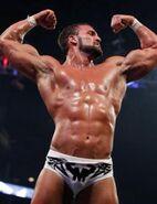 WWESUP31111 22