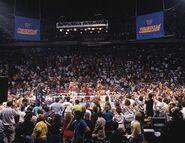 SummerSlam 1989-6
