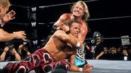 WrestleMania 19.13