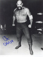 Ox Baker 8