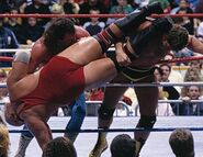 Royal Rumble 1988.4