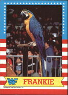 1987 WWF Wrestling Cards (Topps) Frankie 4