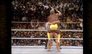 Hogan vs. Warrior 16