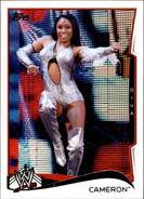 2014 WWE (Topps) Cameron 10