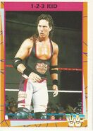 1995 WWF Wrestling Trading Cards (Merlin) 1-2-3 Kid 53