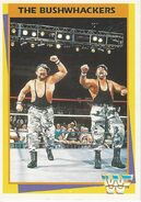 1995 WWF Wrestling Trading Cards (Merlin) Bushwhackers 66