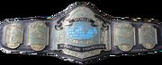 NWA Tag Team championship