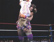 SummerSlam 1995.4