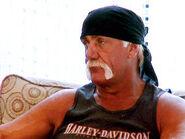 Hogans in Disguise 4