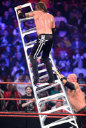 Kane pushing ladder