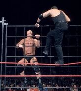 Steel Cage Images.16