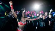 WrestleMania Revenge Tour 2015 - Newcastle.10