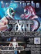 Box y Lucha 3244