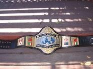 WWF World Champion (old2)
