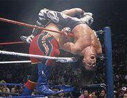 Royal Rumble 1996.1