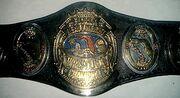 NWA Florida Champion (old)
