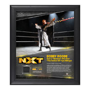 Bobby Roode TakeOver Toronto 15 x 17 Framed Plaque w Ring Canvas