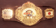 NWA United National Champion (2)