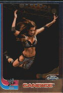2008 WWE Heritage III Chrome Trading Cards Candice 59