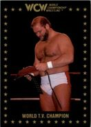 1991 WCW Collectible Trading Cards (Championship Marketing) Arn Anderson 27