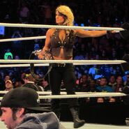 Kaitlyn Divas Champion