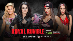RR 15 Bellas v Paige & Natalya