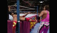 Royal Rumble 1993.00020