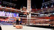 WrestleMania 28.92